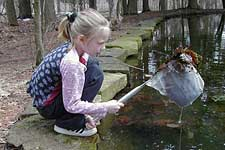 Girl sampling pond water with net