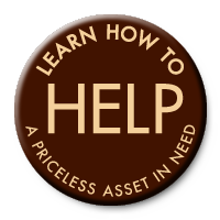 Learn how to help a priceless asset in need